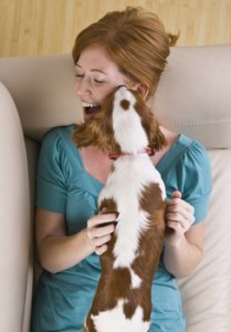 Pet Sitting | Brew City Pet Services, LLC